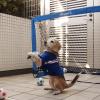 ビーグル犬のプリンちゃんがゴールキーパーの猛特訓!