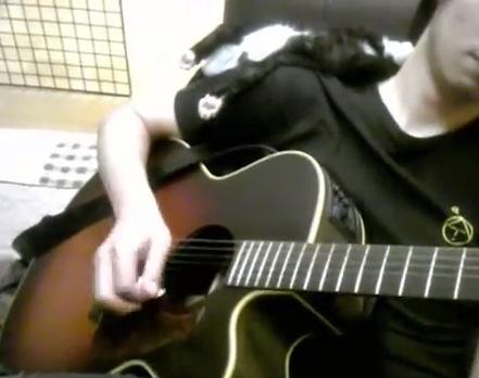 カワイすぎる!ギターを引くお兄さんの肩の上で子猫が爆睡