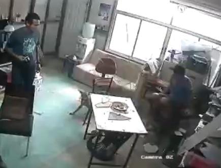 天井から降ってきた犬