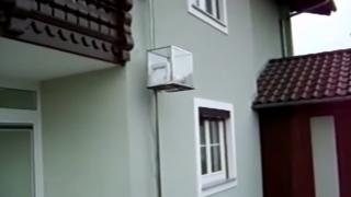ついにこんな時代が。。猫用エレベーターを使う猫