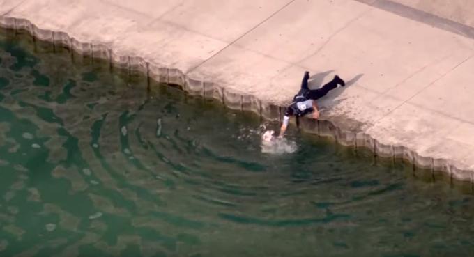 危機一髪!溺れたワンちゃんを素早く助けた素晴らしい警察官