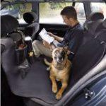 犬 車用品