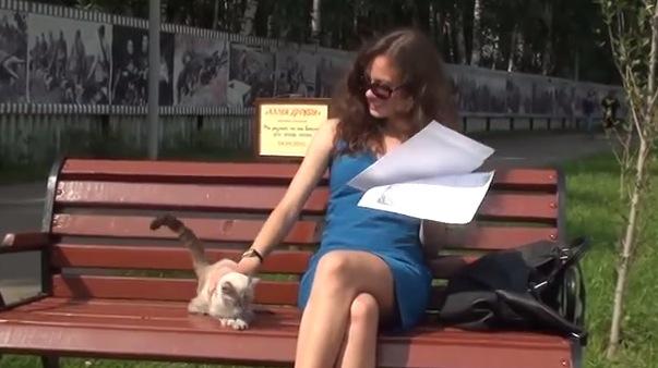美女の膝の上に乗りたい猫とそれを断る美女の攻防戦がおもしろい