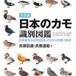 カモ 図鑑