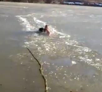 氷が張った川に落ちた犬。その犬を体を張って救出するお兄さんが凄すぎる!