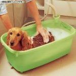 犬 お風呂