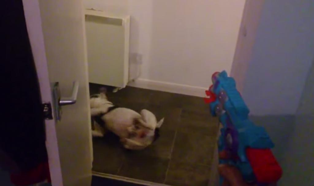 銃に撃たれる演技が完璧な犬