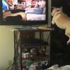 「犬のおもしろ映像」を見るとベットから大ジャンプする犬