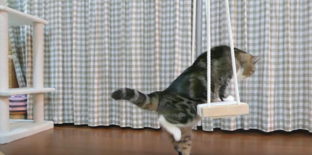 しっぽでいい感じに太鼓を叩く猫の動画