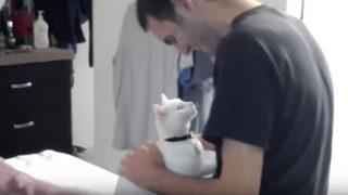 まるで恋人同士!白猫と飼い主のラブラブ動画